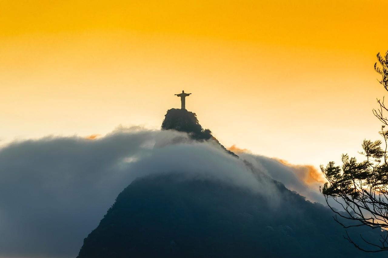Brazil termesztés