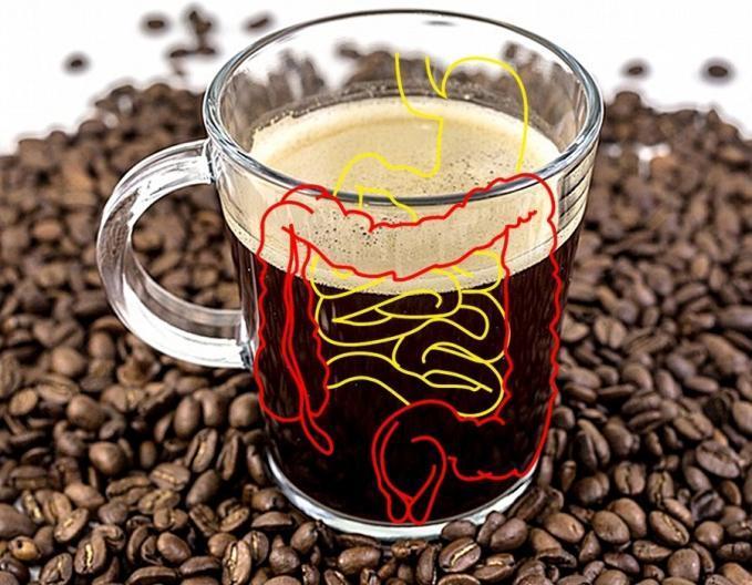 Kávézás és emésztés