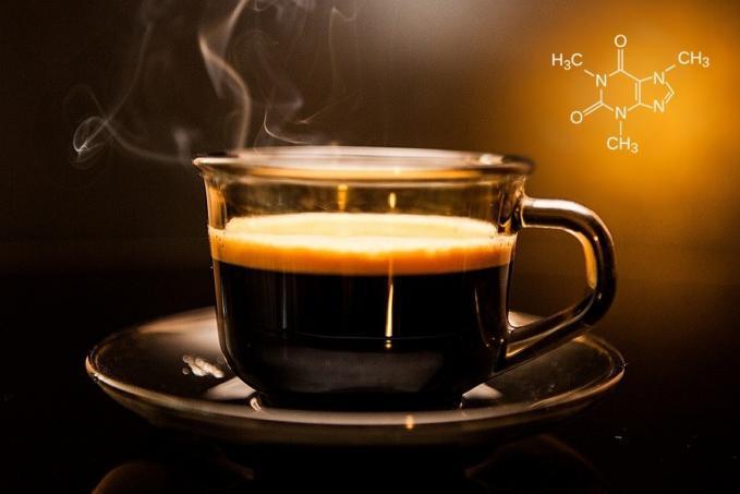 koffein egy alkaloid