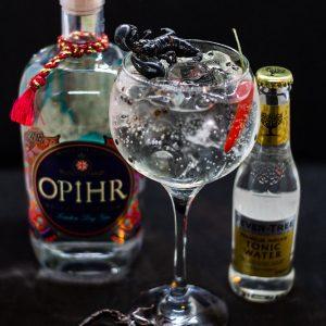 Gin tonic Skorpióval