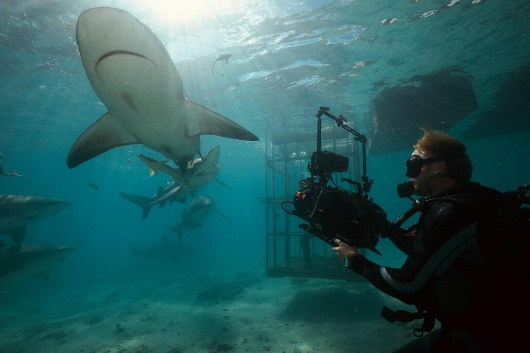 Chris Hemsworth cápák között